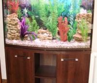 akvarium_dugovoy15