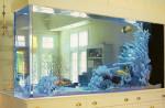 содержание экзотических животных в аквариумах и террариумах дома